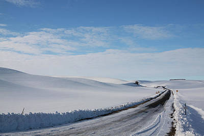 Photograph - Winter Country Road by Tatiana Travelways