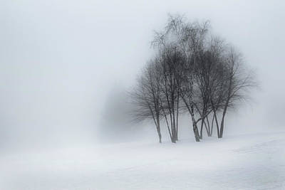 Photograph - Winter Dream by Bill Wakeley