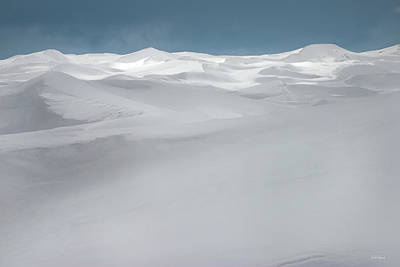 Photograph - Winter Dunes by Leland D Howard