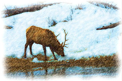 Mixed Media - Winter Elk By River by Kae Cheatham