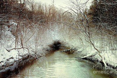Photograph -  Winter Freeze by Elaine Manley