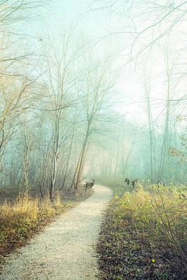 Photograph - Winter Gold Fairy Light by Debra and Dave Vanderlaan