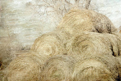 Digital Art - Winter Hay Stack by Ramona Murdock