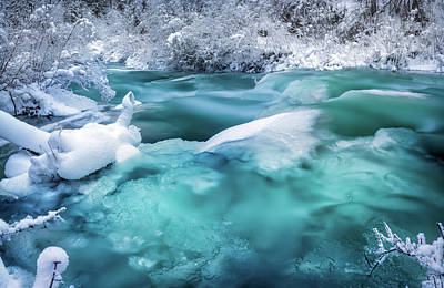 Photograph - Winter Hues by Leland D Howard