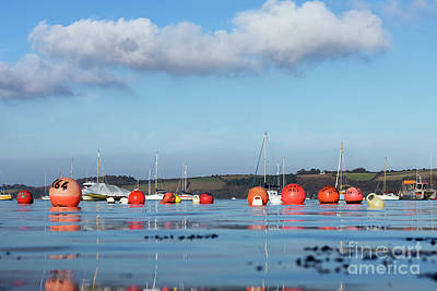 Photograph - Winter In Carrick Roads by Terri Waters