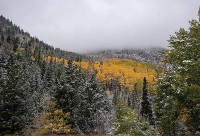 Photograph - Winter In The Autumn Canyon by Brian Stricker