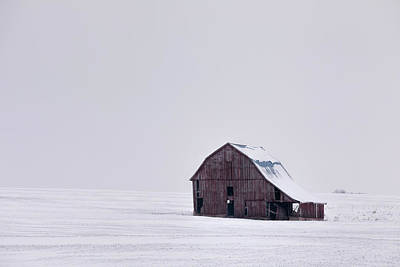 Photograph - Winter Isolation by Scott Bean