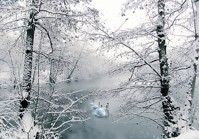 Photograph - Winter Journey by Jessica Jenney