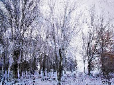 Painting - Winter Lace by Diane Chandler