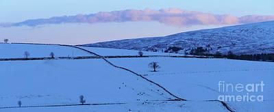 Photograph - Winter Landscape by Phil Banks