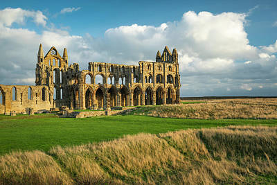 Photograph - Winter Light On Whitby Abbey by David Taylor