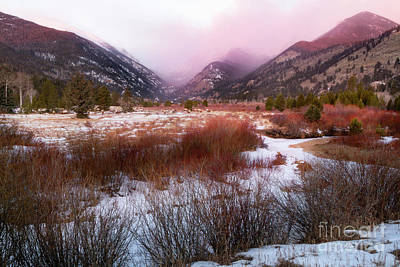 Photograph - Winter Morning In Rocky Mountain National Park by Ronda Kimbrow