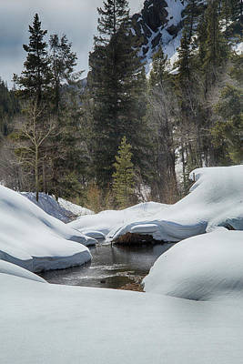 Photograph - Winter On Cebolla Creek by Marie Leslie