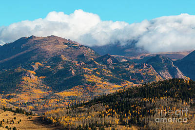 Photograph - Winter Overcoming Autumn by Steve Krull