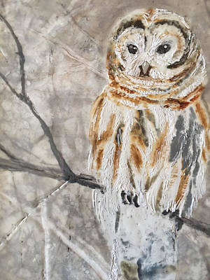 Mixed Media - Winter Owl by Anne Stine