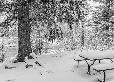 Photograph - Winter Picnic by Tom Potter