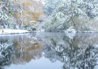 Photograph - Winter Reflections by Cathy Boone