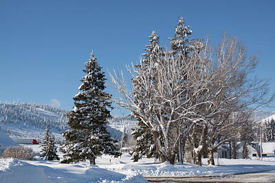 Photograph - Winter Scene In Spencer Idaho by Tatiana Travelways