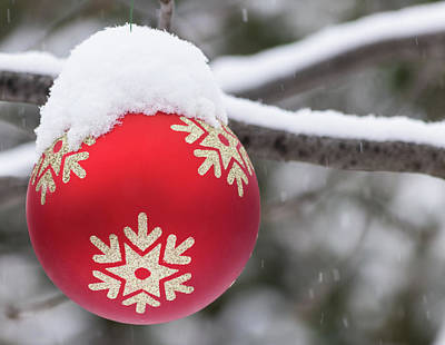 Photograph - Winter Scene - Red Christmas Ball Outside, With Snow On It by Cristina Stefan