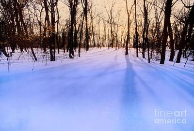 Photograph - Winter Shadows by Scott Kemper