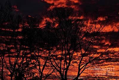 Photograph - Winter Sunrise by Ann E Robson