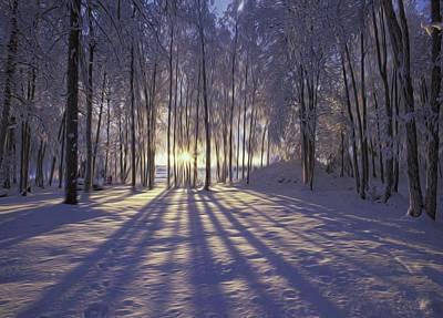 Photograph - Winter Sunrise by Dawn Van Doorn