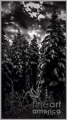 Photograph - Winter Sunrise by Jennifer Lake