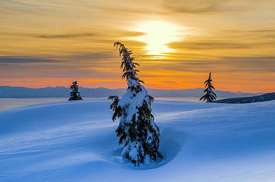 Photograph - Winter Sunset, Mount Seymour Provincial by Michael Wheatley
