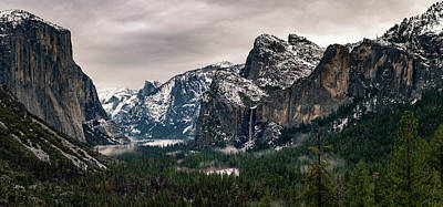 Photograph - Winter Tunnel View by Mathew Brown
