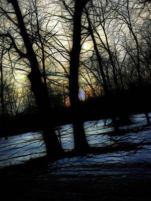 Photograph - Winter Twilight Teases The Woods by Cindy Boyd