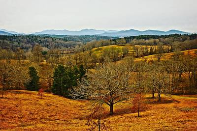 Photograph - Winter View From Biltmore by Rodney Lee Williams