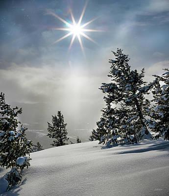 Photograph - Winter Wonderland by Leland D Howard