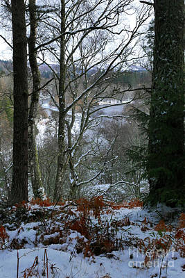 Photograph - Winter Woodland View by Phil Banks
