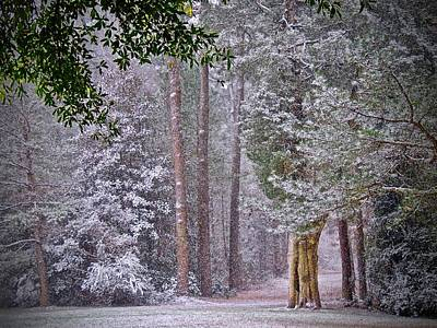 Photograph - First Snow by Don Moore
