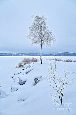 Fantasy Mixed Media - Winterland 10 by Veikko Suikkanen