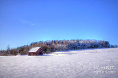 Winter Animals Rights Managed Images - Winterland 3 Royalty-Free Image by Veikko Suikkanen