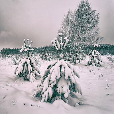 Photograph - Winter's Coming. Horytsya, 2018. by Andriy Maykovskyi
