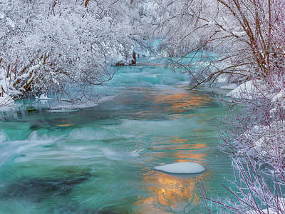 Photograph - Winters Exquisite Beauty by Leland D Howard