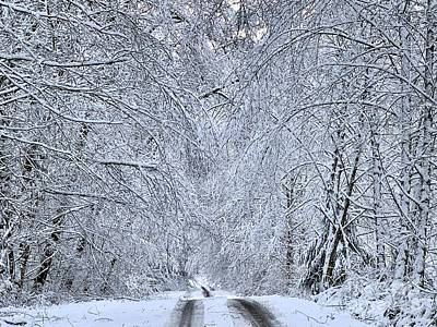 Photograph - Wintry Road by Sean Griffin