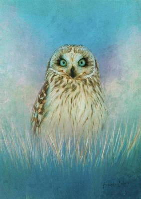 Wall Art - Mixed Media - Wise Owl by Amanda Lakey