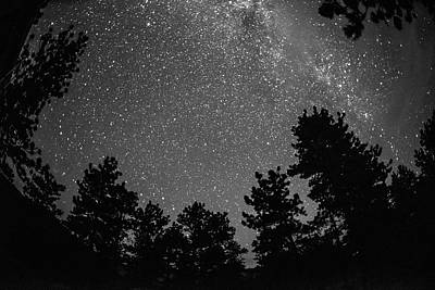 Photograph - Wish Upon A Star by Jennifer Grossnickle