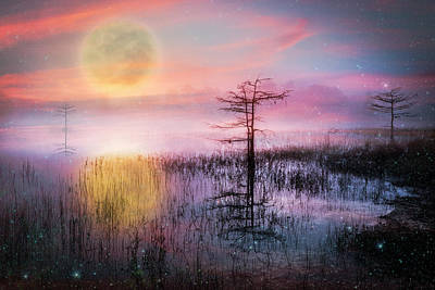 Photograph - Wishing On A Star Tonight by Debra and Dave Vanderlaan
