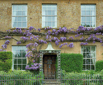 Photograph - Wisteria Across A Cotswold Stone House  by Tim Gainey