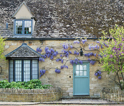 Photograph - Wisteria Floribunda On A Cotswold Cottage by Tim Gainey
