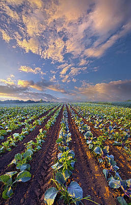 Art Print featuring the photograph With A Faith Born Not Of Words But Of Deeds by Phil Koch