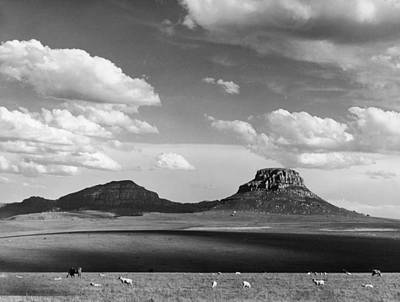Photograph - Witkoppe Mountains by Margaret Bourke-white