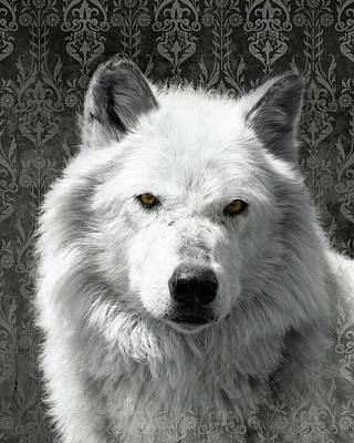 Photograph - Wolf by Mary Hone