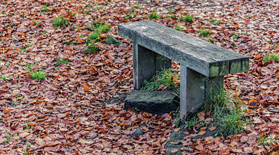 Photograph - Wooden Autumn Bench by Scott Lyons