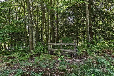 Photograph - Wooden Barrier In The Woods by Sue Smith
