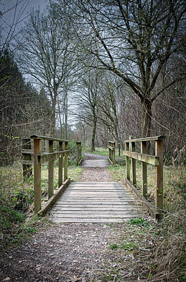 Photograph - Wooden Bridge Forest Path by Scott Lyons